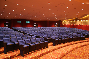Malaysian Airlines auditorium is dimmed using Futronix Lighting Controls