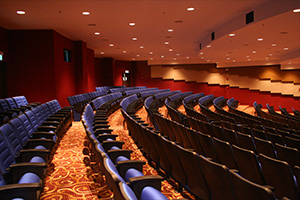 Side view of the seat lighting in the Malaysian airlines auditorium